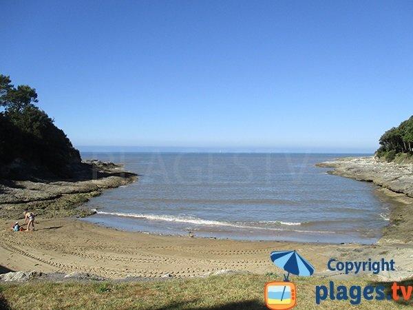 Photo of Conseil beach in Vaux sur Mer in France