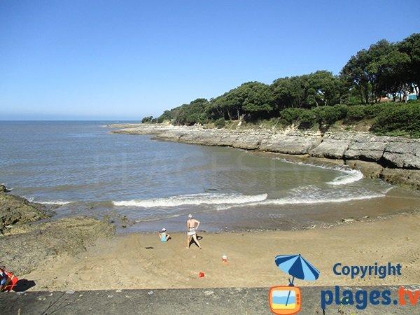 Swimming - Conseil beach - Vaux sur Mer