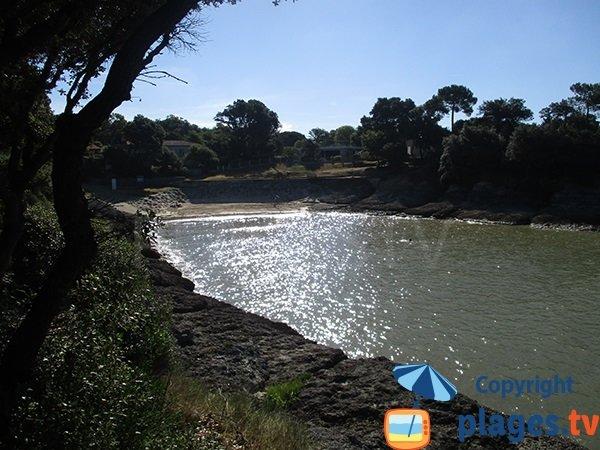 environment of Conseil beach in Vaux sur Mer