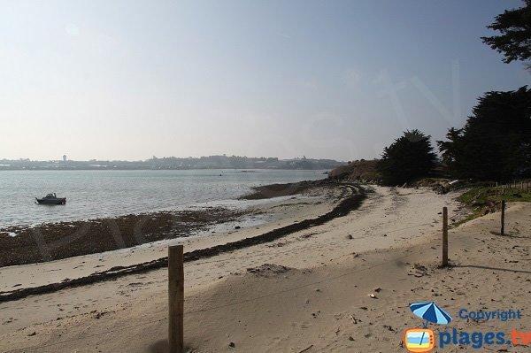Bord de la plage du conservatoire du Littoral sur la presqu'ile de Perharidi à Roscoff