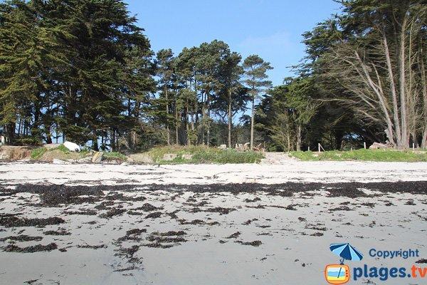 Shade beach in Roscoff - Perharidi