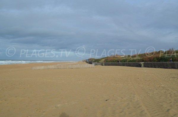 Promenade le long de la plage des Corsaires d'Anglet