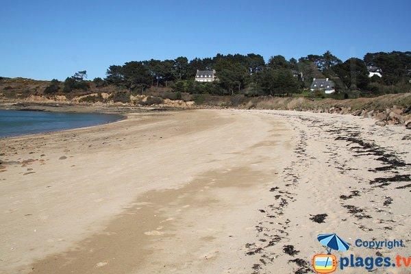 Photo de la plage du Cosmeur à Carantec