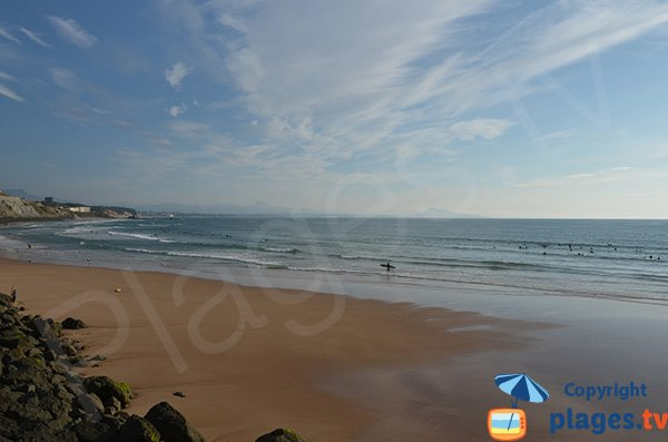 Basques beach in Biarritz at low tide