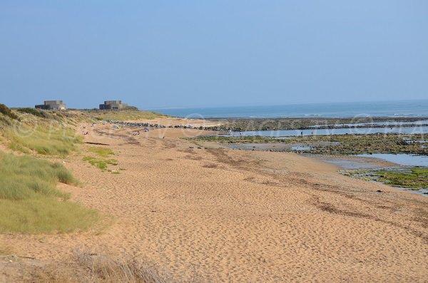 Photo de la plage de la Cotinière à Oléron