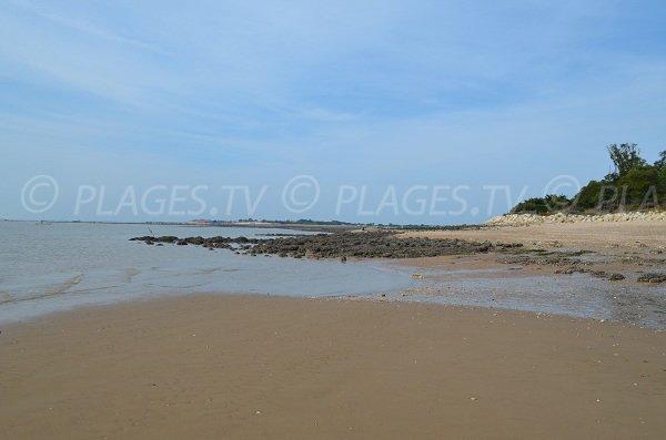Mer et banc de sable à l'est de l'île d'Aix
