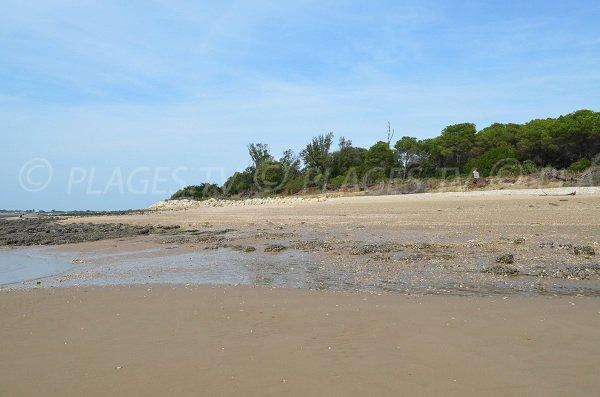 Partie la plus à l'est de l'île d'Aix