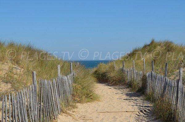 Sentier d'accès à la plage de Couny