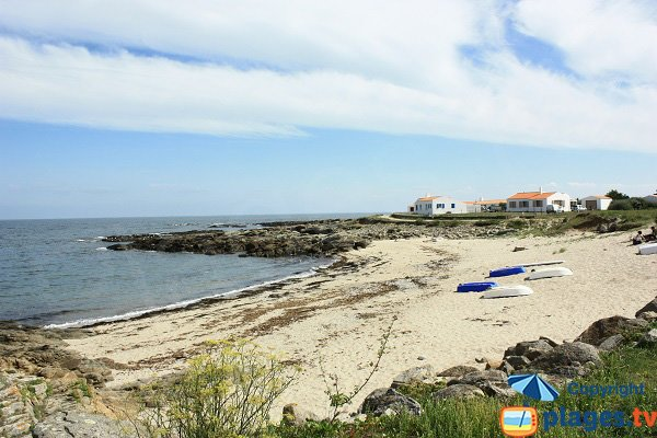 Photo of Cours Moulin Beach in Ile d'Yeu in France