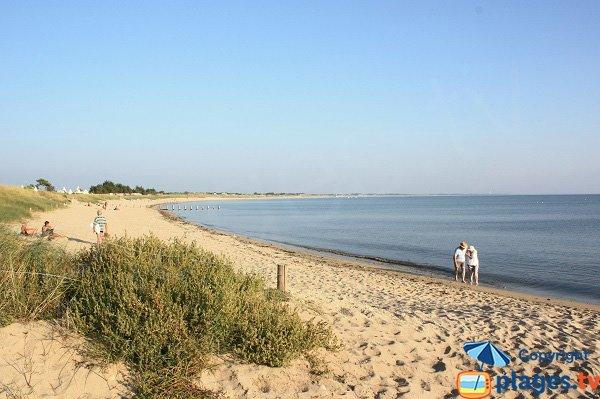 Photo of Court beach - Noirmoutier La Guérinière