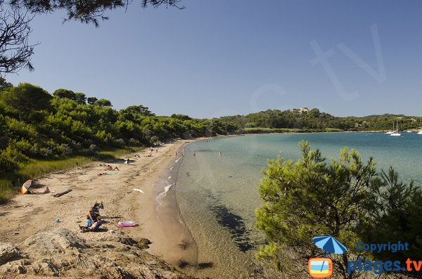 Courtade beach in Porquerolles in France