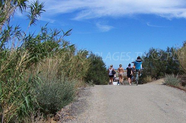 Sentier d'accès à la plage des Coussoules - Leucate