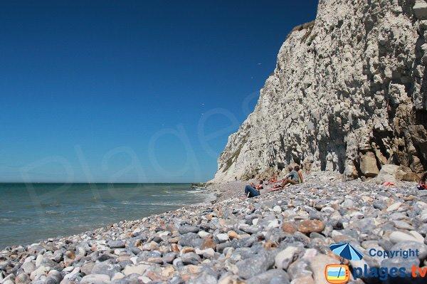 Cran d'Escalles et sa plage