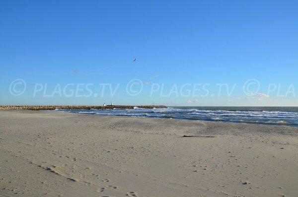 Crin Blanc beach in Saintes Maries de la Mer - France