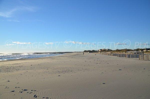 Photo Crin Blanc beach - Saintes Maries de la Mer - France