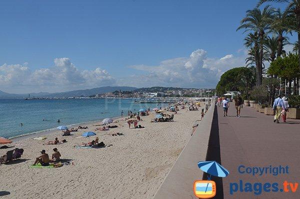 Gehen Sie über den Strand von La Croisette
