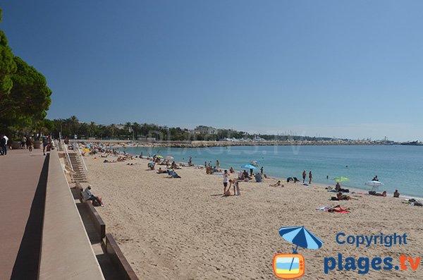 Photo de la plage de la Croisette - Zone gratuite - Cannes