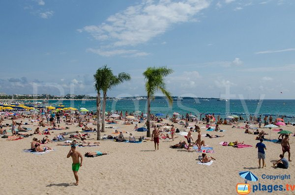 Photo of the Cannes beach in summer