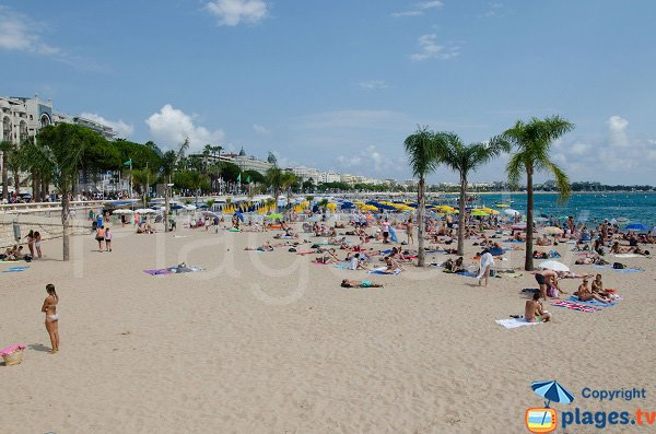 Croisette beach in Cannes in summer