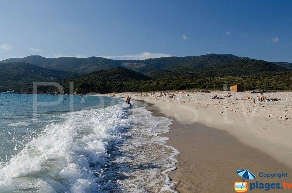 Vagues sur la plage de Cupabia - Corse