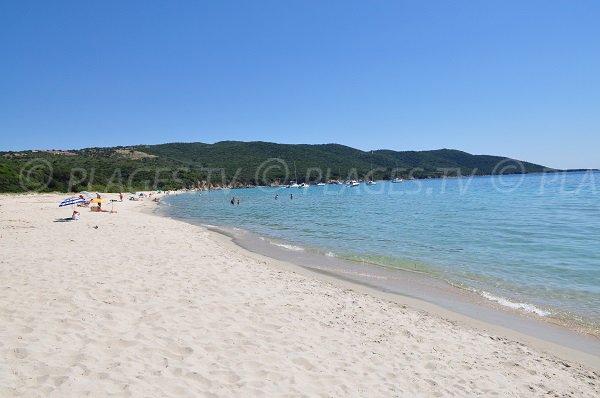 Plage de sable blanc à Porto Pollo