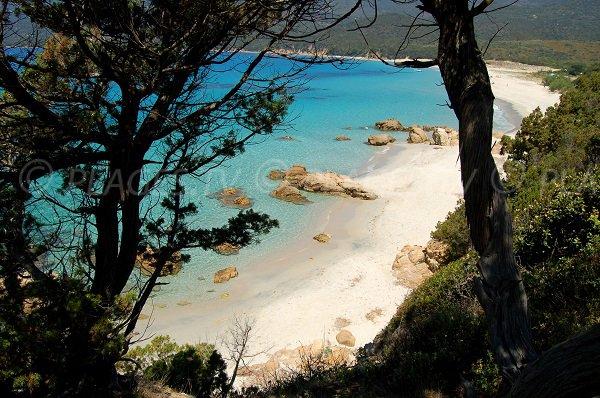 Photo de la plage de Cupabia
