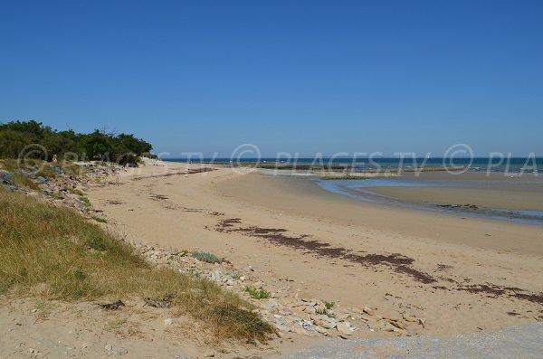 Photo of Cytons beach - Les Portes en Ré