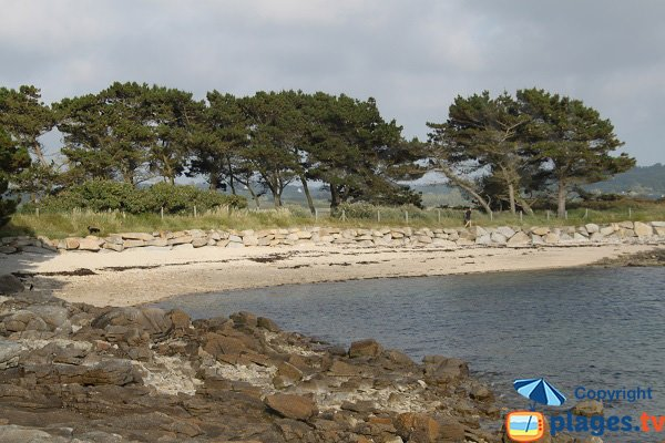Plage aux Dames - Port St Sauveur - Pleumeur-Bodou