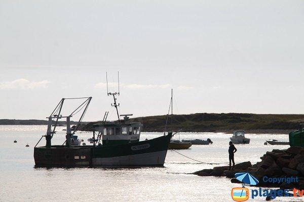 Pêcheur dans le port de St Sauveur - Ile-Grande - Pleumeur-Bodou