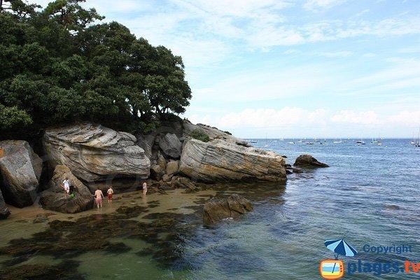 Rochers sur la plage des Dames - Noirmoutier