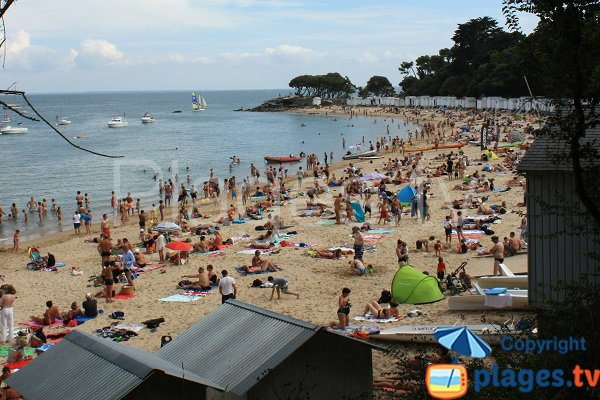 Beach and bathing huts - Les Dames - Noirmoutier