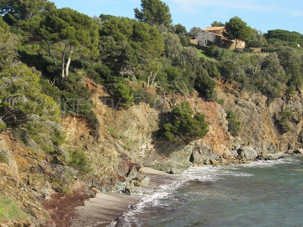 Photo of Darboussières in Hyères - France