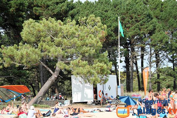 Surveillance de la plage