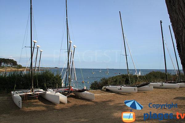 Les catamarans du club Océane