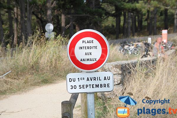 Plage interdite aux animaux