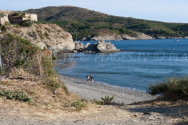 Photo of Del Forat beach - Port Vendres