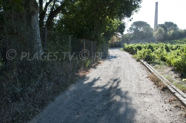 Access to Del Forat cove - Port Vendres