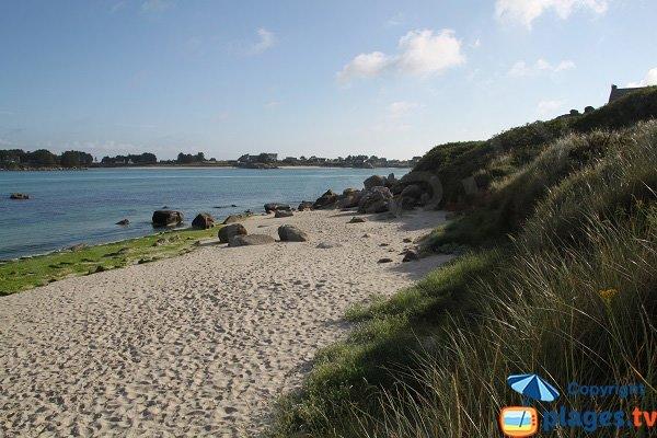 Environnement de la plage de Dibenou à Guissény