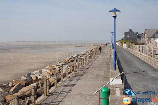 Photo de la plage de la Digue à Hauteville sur Mer