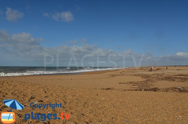Photo de la plage de la Digue - Tarnos