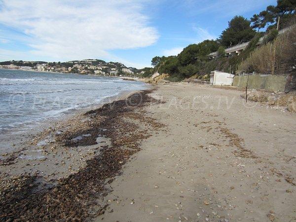 Spiaggia Dorée di Sanary sur Mer in inverno
