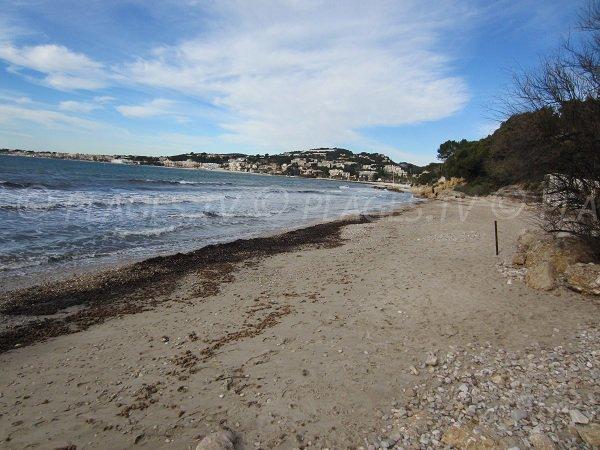 Spiaggia Dorata di Sanary e vista Bandol