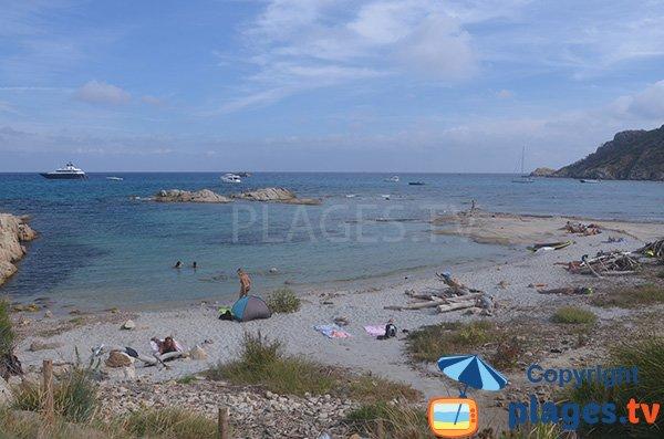 Photo de la plage de la Douane à proximité du Cap Taillat - Ramatuelle