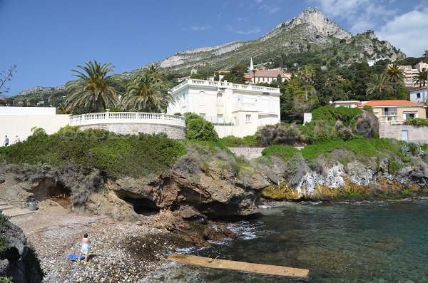 Beach opened to dogs in Cap d'Ail