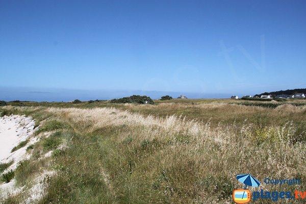 Environnement de la plage du Dourlin