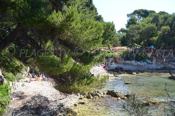 Creek with shadow on the island of Lérins - Pointe du Dragon