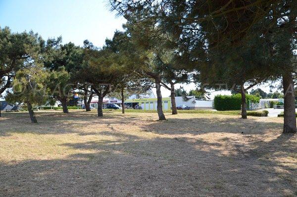 Environnement de la plage de Drehen à Quiberon