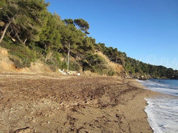 Spiaggia selvaggia di Pradet