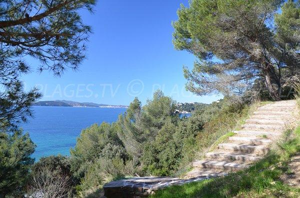 Scale per la spiaggia di Monaco