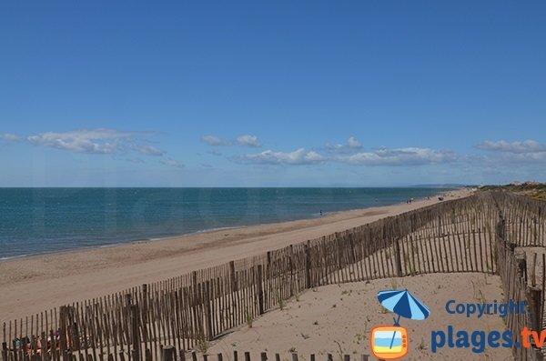 Environnement de la plage de la Dune à Vias